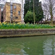 punting-in-cambridge-20160306-31