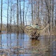 Powódź 2013 - rozlewiska Bugu okolice Nowosiółek
