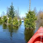 Powódź 2013 nad Bugiem - okolice Mościc Dolnych.