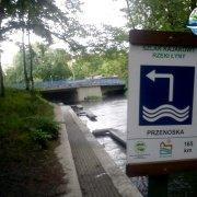 rzeka-lyna-w-olsztynie-2011_05_19-002