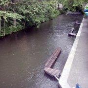 rzeka-lyna-w-olsztynie-2011_05_19-005