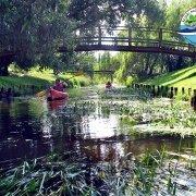 rzeka-Zielawa