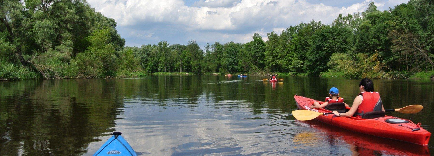 Spływy kajakowe Bugiem, Włodawką, Krzną, Zielawą, Wieprzem.