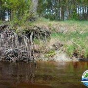 Majówka w kajaku - spływ kajakowy Włodawką 2009.