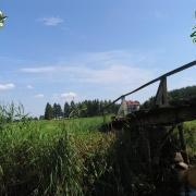 Dolina Zielawy